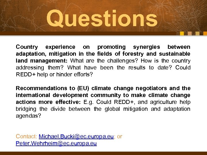 Questions Country experience on promoting synergies between adaptation, mitigation in the fields of forestry