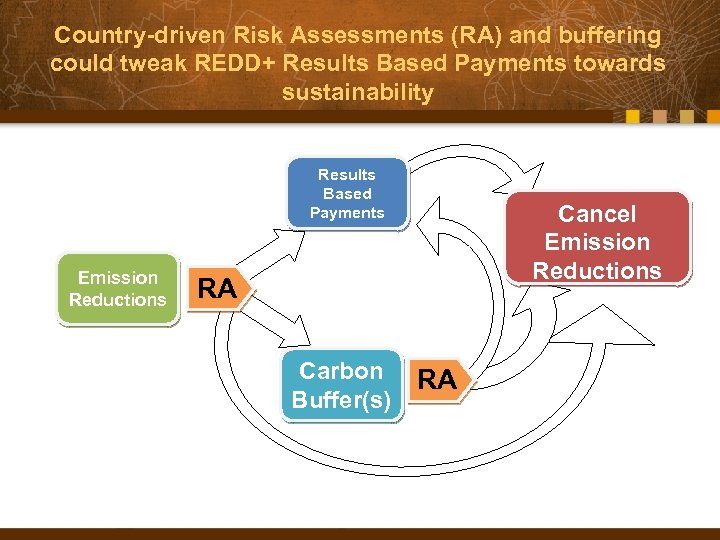 Country-driven Risk Assessments (RA) and buffering could tweak REDD+ Results Based Payments towards sustainability