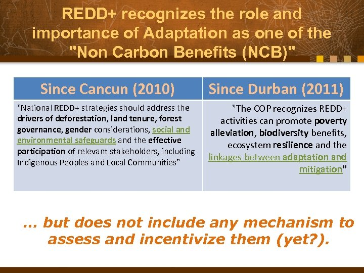 REDD+ recognizes the role and importance of Adaptation as one of the