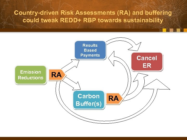 Country-driven Risk Assessments (RA) and buffering could tweak REDD+ RBP towards sustainability Results Based
