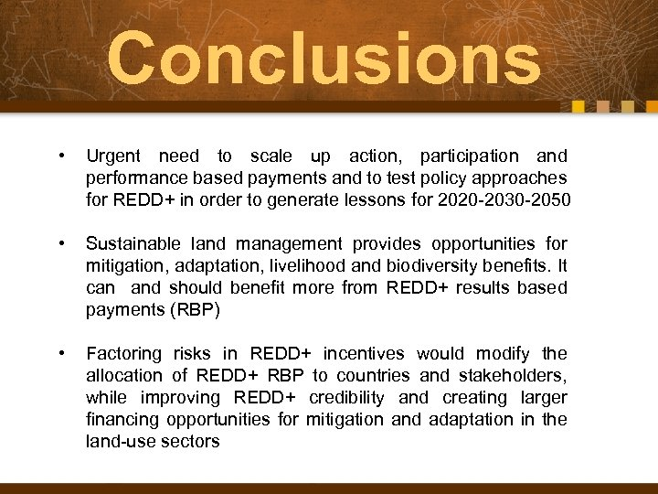 Conclusions • Urgent need to scale up action, participation and performance based payments and