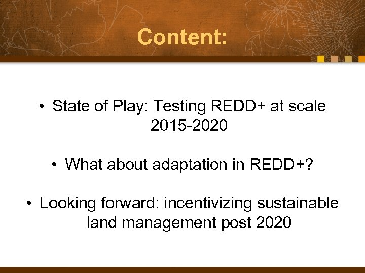 Content: • State of Play: Testing REDD+ at scale 2015 -2020 • What about
