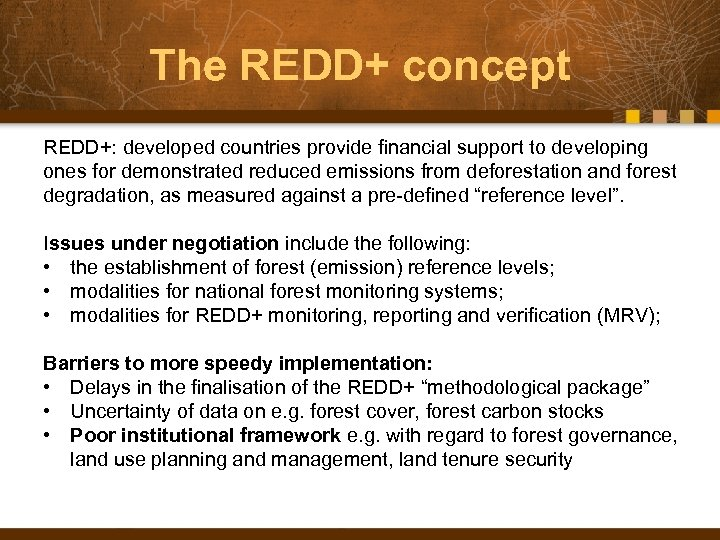 The REDD+ concept REDD+: developed countries provide financial support to developing ones for demonstrated