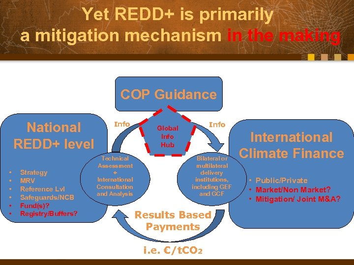 Yet REDD+ is primarily a mitigation mechanism in the making COP Guidance National REDD+