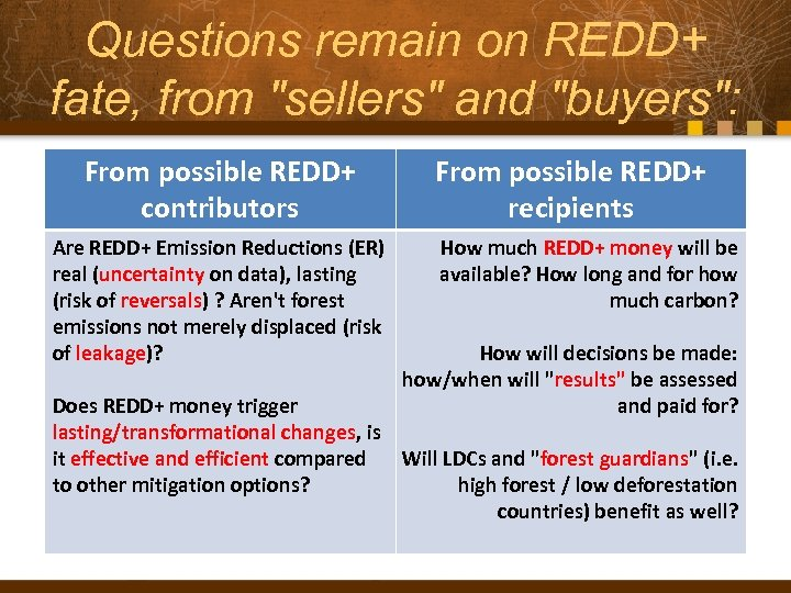 Questions remain on REDD+ fate, from