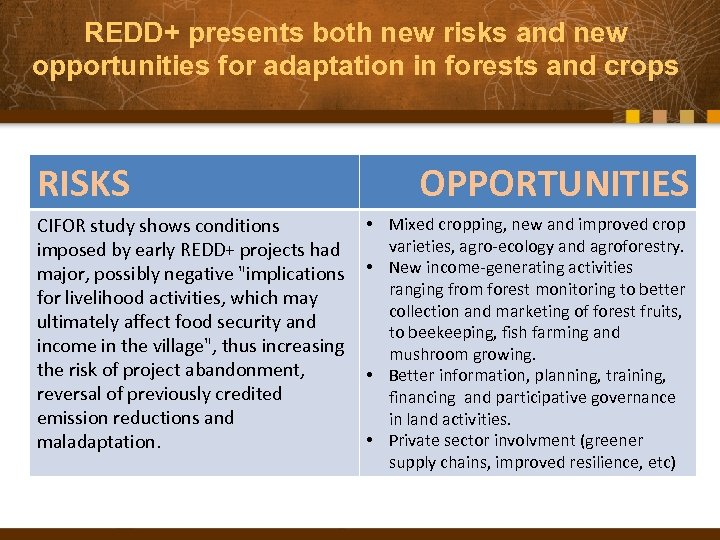 REDD+ presents both new risks and new opportunities for adaptation in forests and crops