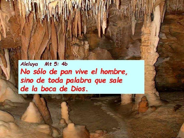 Aleluya Mt 5: 4 b No sólo de pan vive el hombre, sino de
