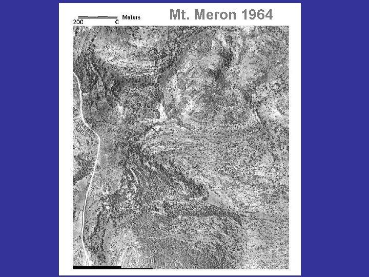 Mt. Meron 1964