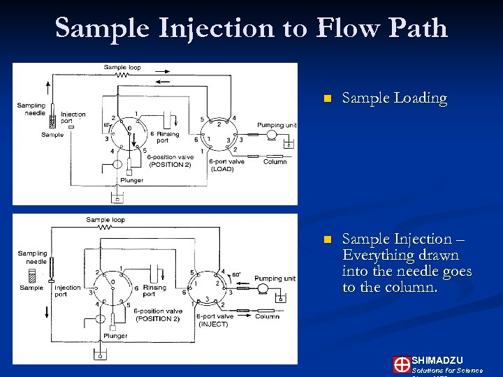 Sample Injection to Flow Path n Sample Loading n Sample Injection – Everything drawn