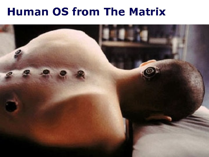 Human OS from The Matrix
