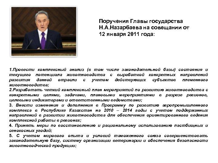 Поручения Главы государства Н. А. Назарбаева на совещании от 12 января 2011 года: 1.