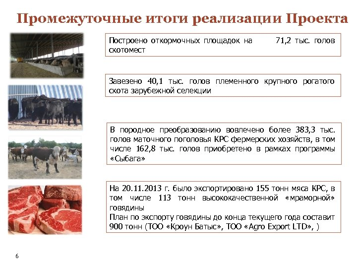 Промежуточные итоги реализации Проекта Построено откормочных площадок на скотомест 71, 2 тыс. голов Завезено