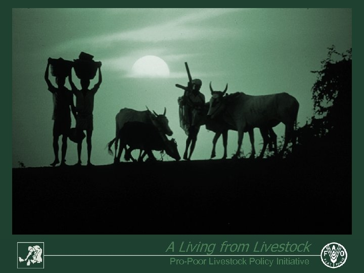 A Living from Livestock Pro-Poor Livestock Policy Initiative
