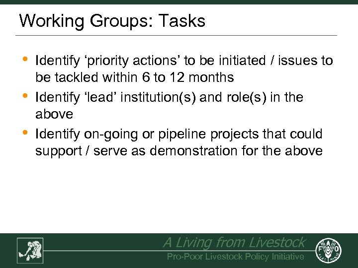 Working Groups: Tasks • • • Identify 'priority actions' to be initiated / issues