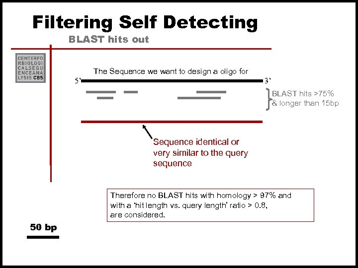 Filtering Self Detecting BLAST hits out The Sequence we want to design a oligo