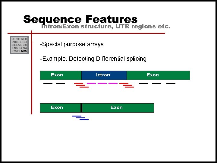 Sequence Features Intron/Exon structure, UTR regions etc. -Special purpose arrays -Example: Detecting Differential splicing