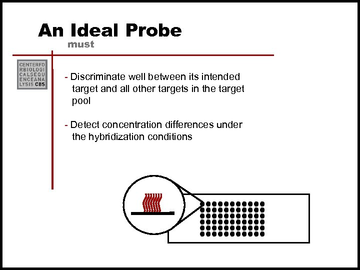 An Ideal Probe must - Discriminate well between its intended target and all other