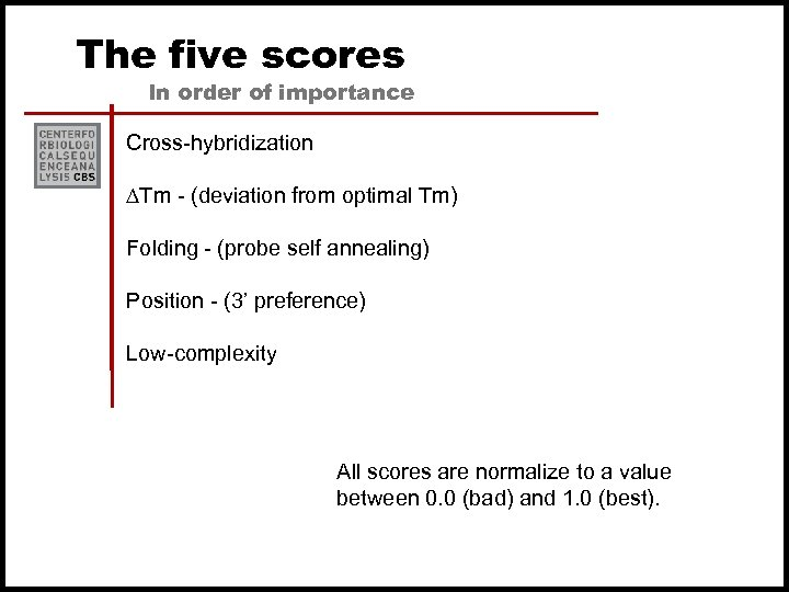 The five scores In order of importance Cross-hybridization ∆Tm - (deviation from optimal Tm)