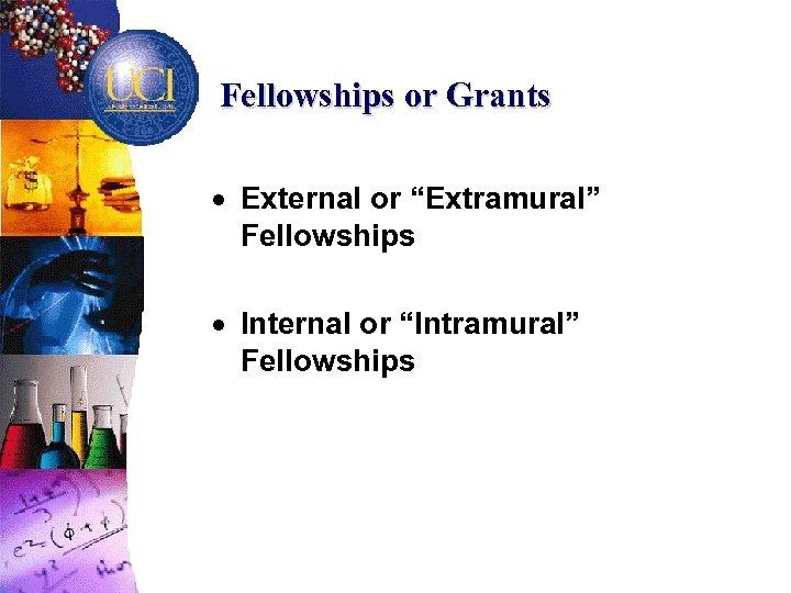 "Fellowships or Grants · External or ""Extramural"" Fellowships · Internal or ""Intramural"" Fellowships"