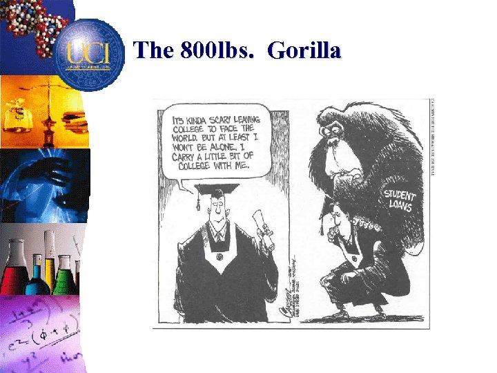 The 800 lbs. Gorilla