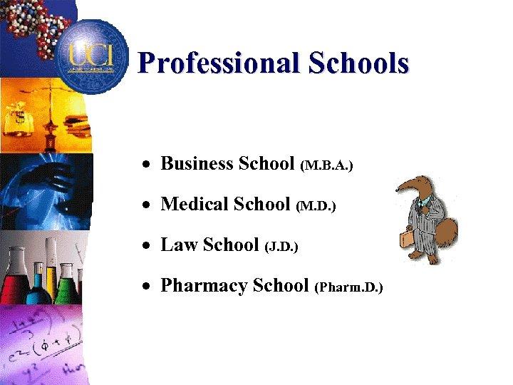 Professional Schools · Business School (M. B. A. ) · Medical School (M. D.