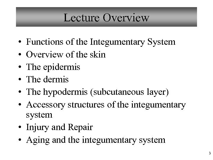 Lecture Overview • • • Functions of the Integumentary System Overview of the skin