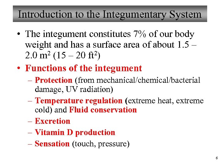 Introduction to the Integumentary System • The integument constitutes 7% of our body weight