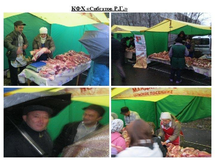 КФХ «Сибгатов Р. Г. »