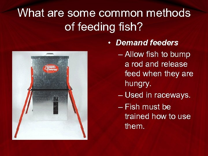 What are some common methods of feeding fish? • Demand feeders – Allow fish