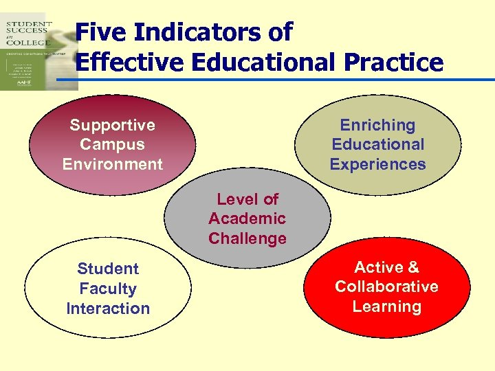 Five Indicators of Effective Educational Practice Supportive Campus Environment Enriching Educational Experiences Level of