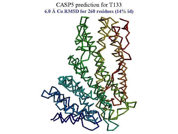 CASP 5 prediction for T 133 6. 0 Å Cα RMSD for 260 residues