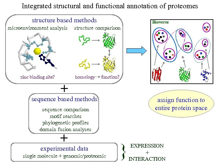 Integrated structural and functional annotation of proteomes structure based methods microenvironment analysis Bioverse structure