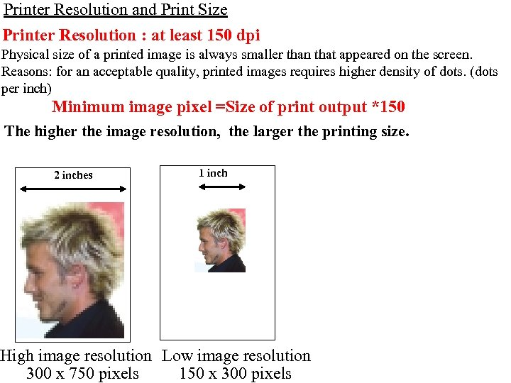 Printer Resolution and Print Size Printer Resolution : at least 150 dpi Physical size