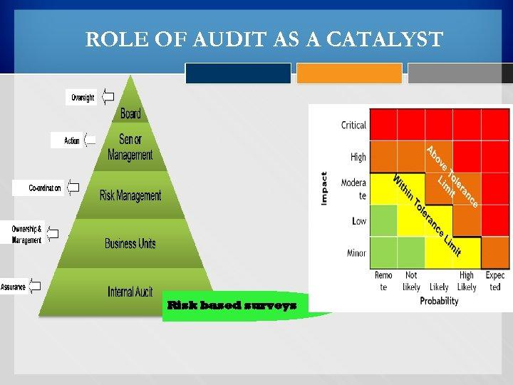 ROLE OF AUDIT AS A CATALYST Risk based surveys