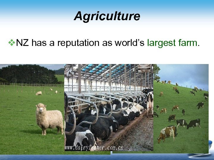 Agriculture v. NZ has a reputation as world's largest farm.