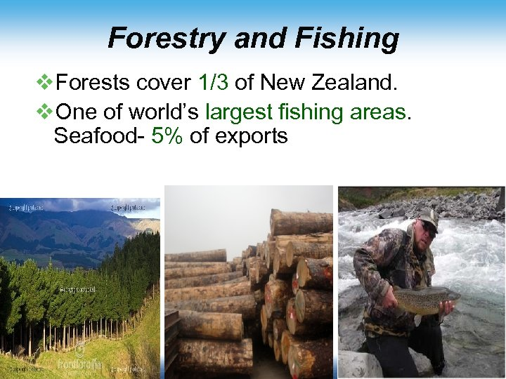 Forestry and Fishing v. Forests cover 1/3 of New Zealand. v. One of world's