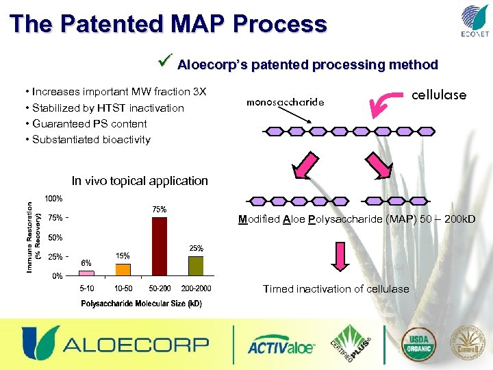 The Patented MAP Process ü Aloecorp's patented processing method • Increases important MW fraction