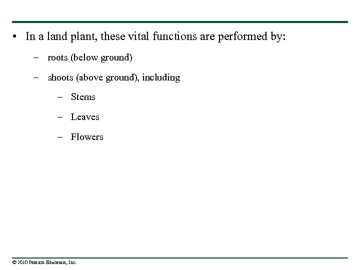 • In a land plant, these vital functions are performed by: – roots