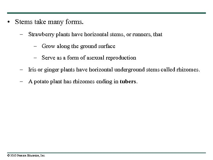 • Stems take many forms. – Strawberry plants have horizontal stems, or runners,