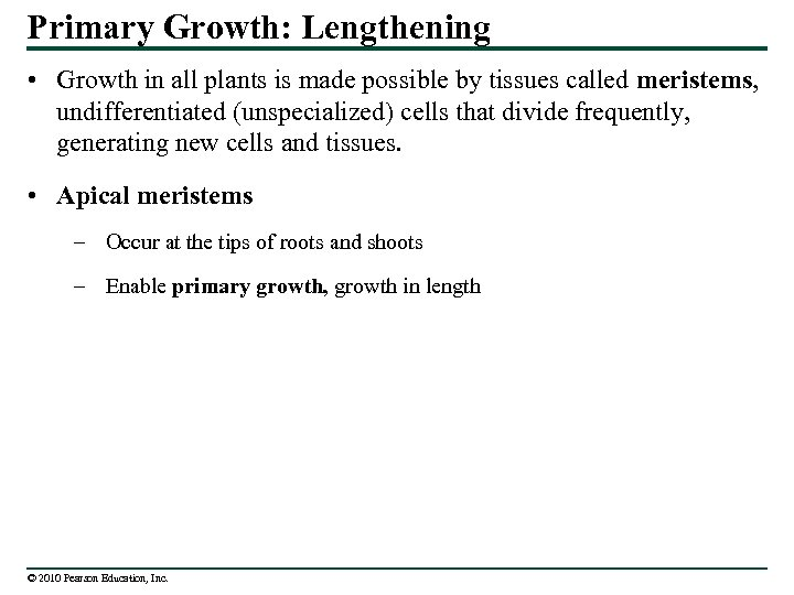 Primary Growth: Lengthening • Growth in all plants is made possible by tissues called