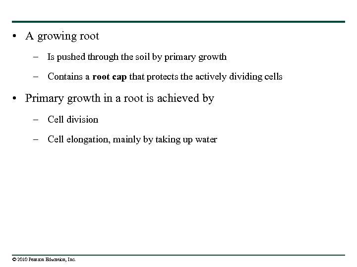 • A growing root – Is pushed through the soil by primary growth