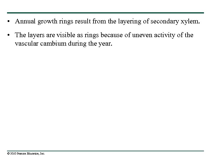 • Annual growth rings result from the layering of secondary xylem. • The