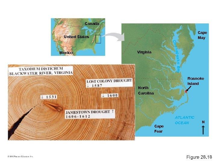 Canada Cape May United States Ch e s a p e ak Mexico Virginia