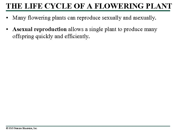 THE LIFE CYCLE OF A FLOWERING PLANT • Many flowering plants can reproduce sexually