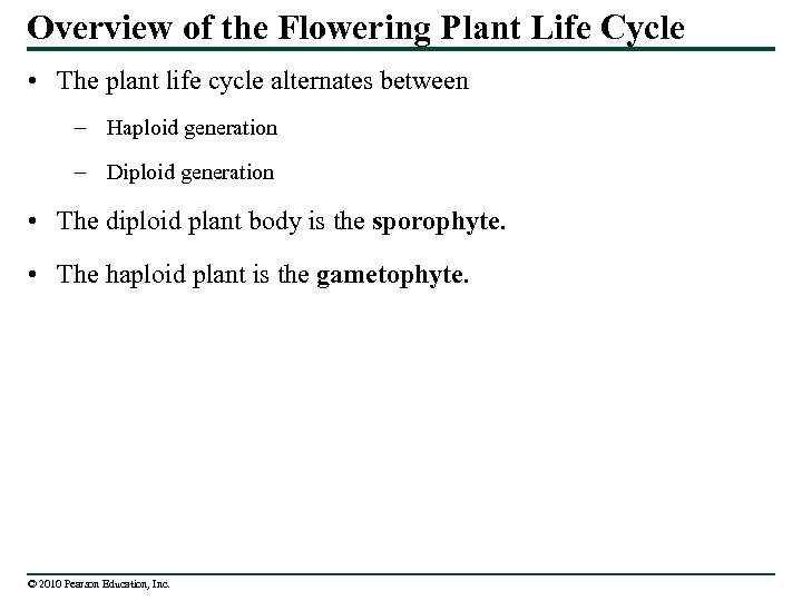 Overview of the Flowering Plant Life Cycle • The plant life cycle alternates between