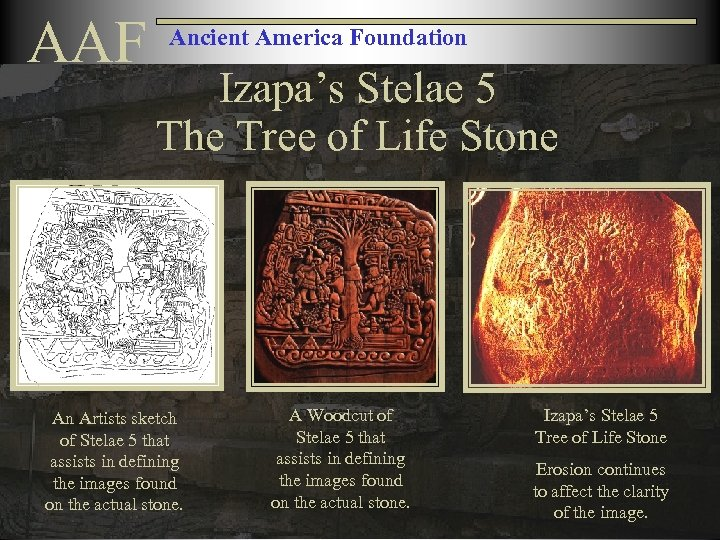 AAF Ancient America Foundation Izapa's Stelae 5 The Tree of Life Stone An Artists