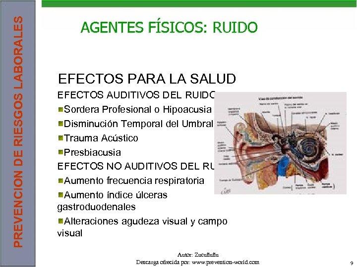 PREVENCION DE RIESGOS LABORALES AGENTES FÍSICOS: RUIDO EFECTOS PARA LA SALUD EFECTOS AUDITIVOS DEL