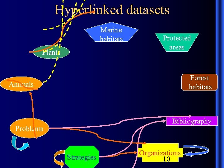 Hyperlinked datasets Marine habitats Plants Protected areas Forest habitats Animals Bibliography Problems Strategies Organizations