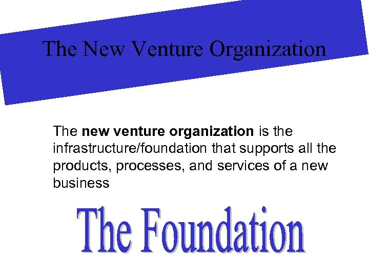 The New Venture Organization The new venture organization is the infrastructure/foundation that supports all