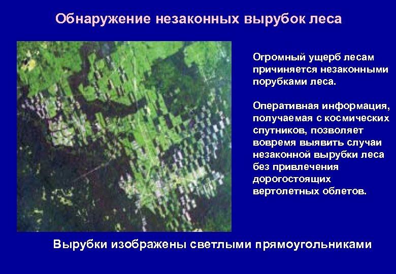 Обнаружение незаконных вырубок леса Огромный ущерб лесам причиняется незаконными порубками леса. Оперативная информация, получаемая